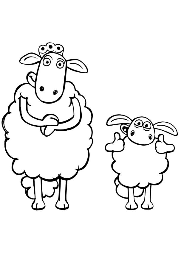 Desenhos De Timmy E Mom Sheep Di Shaun O Carneiro Para Colorir