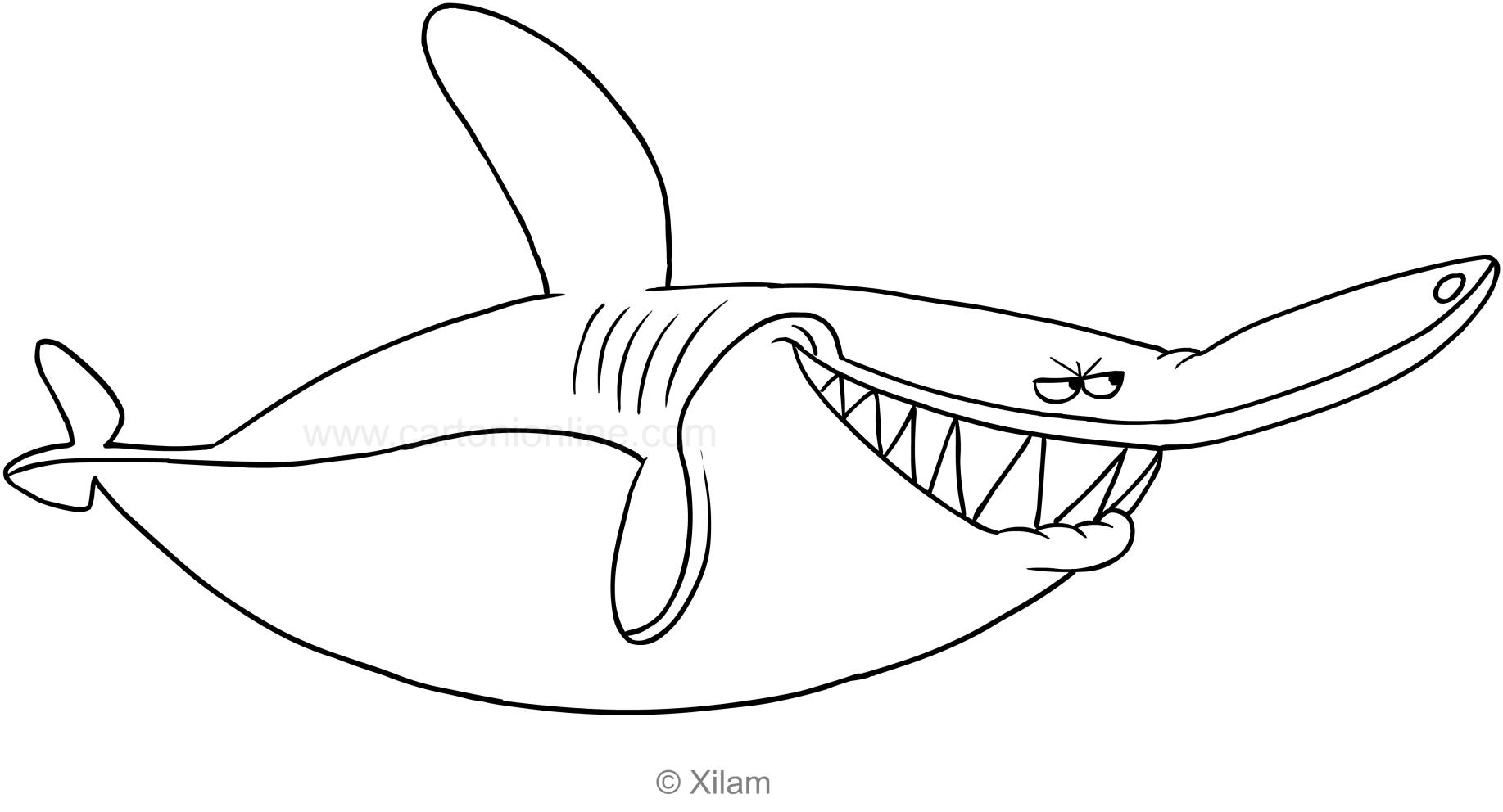 Coloriage De Sharko Le Requin