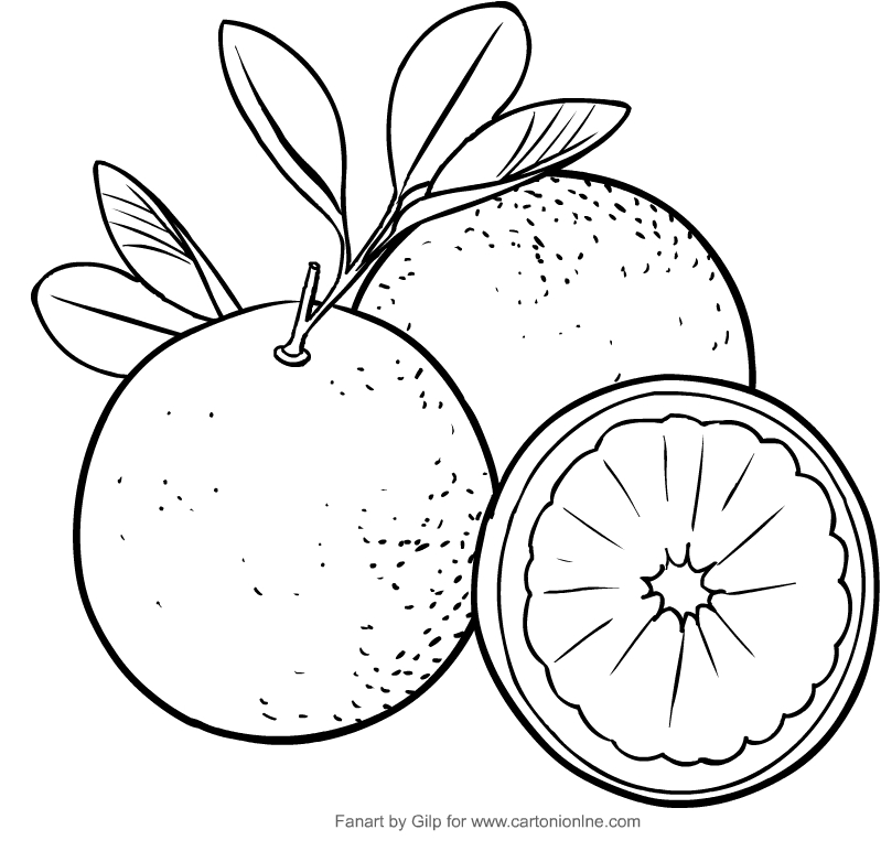 Dibujo de naranjas para colorear