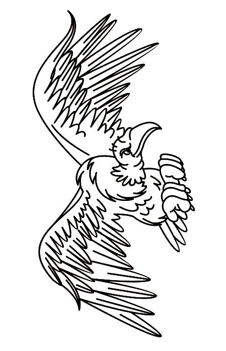 Disegno 1 di Avvoltoi da stampare e colorare