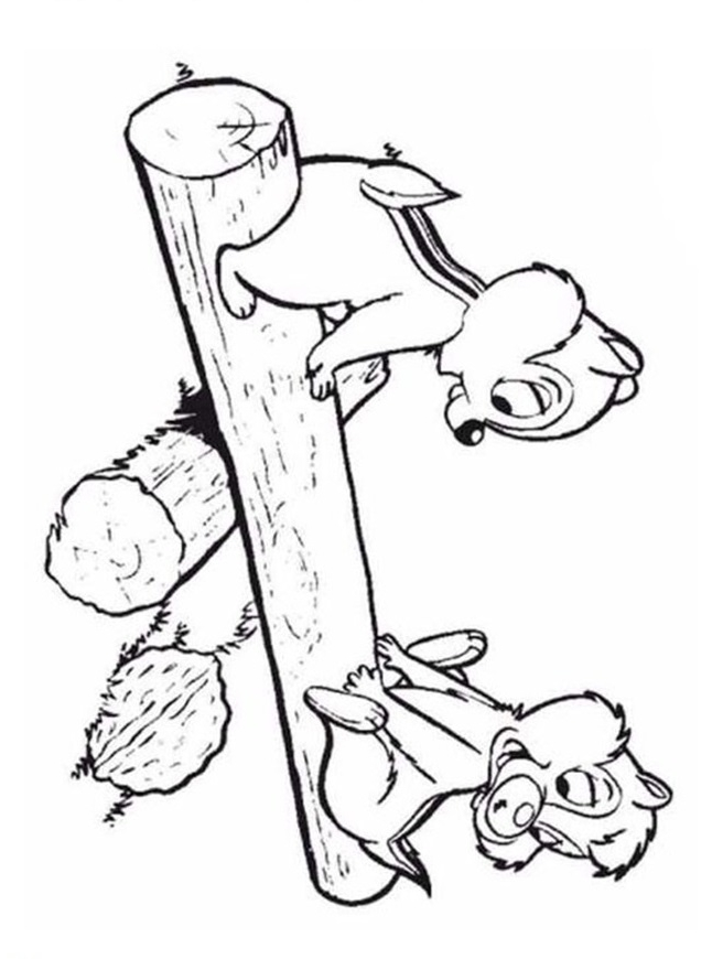 Chip And Dale Coloring Pages - Coloring Home | 870x646