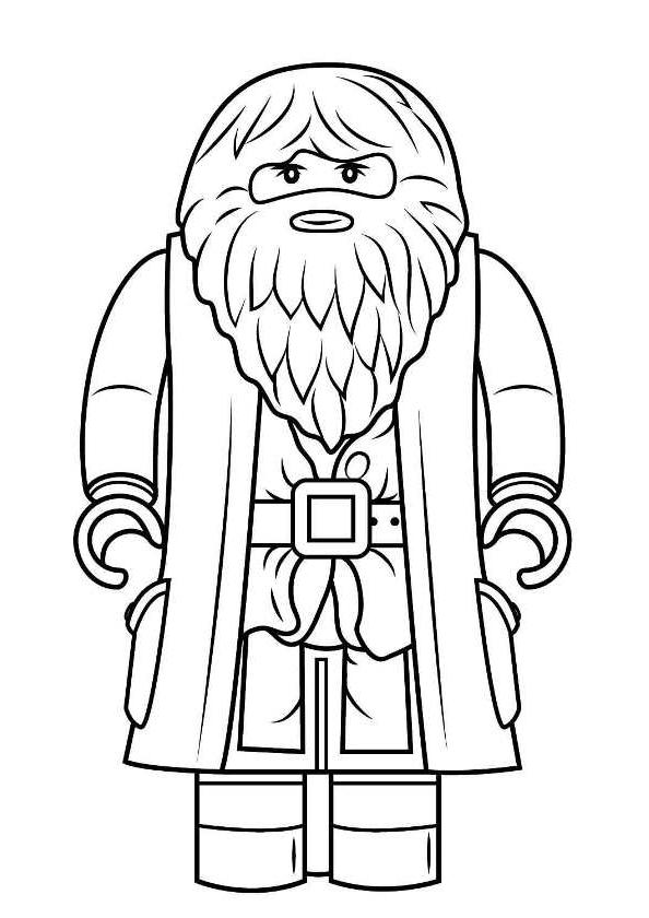 Disegno 4 Di Lego Harry Potter Da Colorare