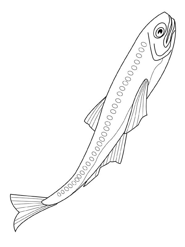 Disegno 5 di Pesci da stampare e colorare