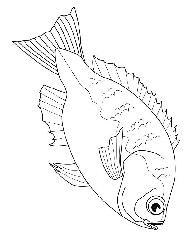 Disegno 6 di Pesci da stampare e colorare