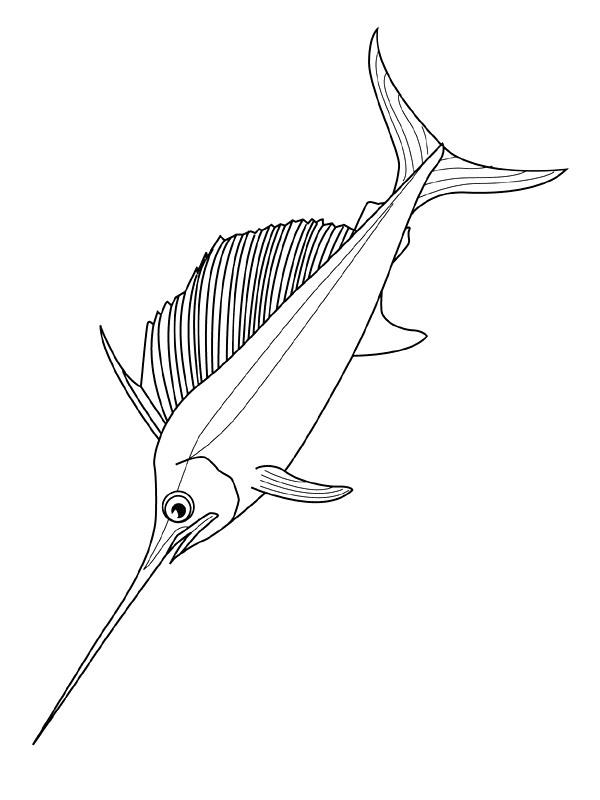 Disegno 15 di Pesci da stampare e colorare