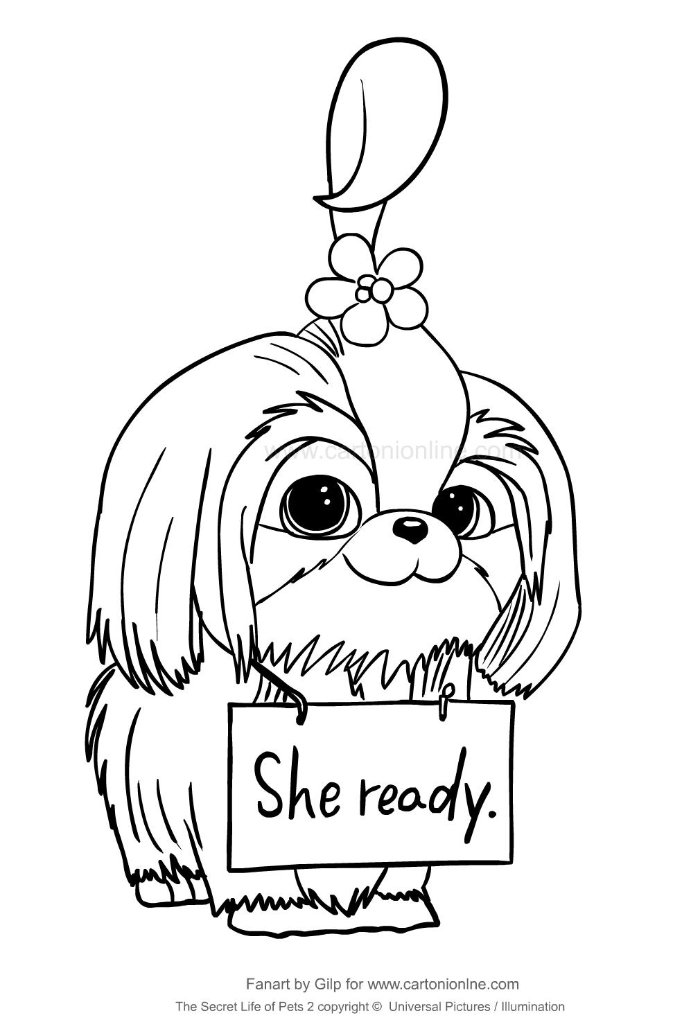 Dibujo De Daisy De Mascotas 2 Para Colorear