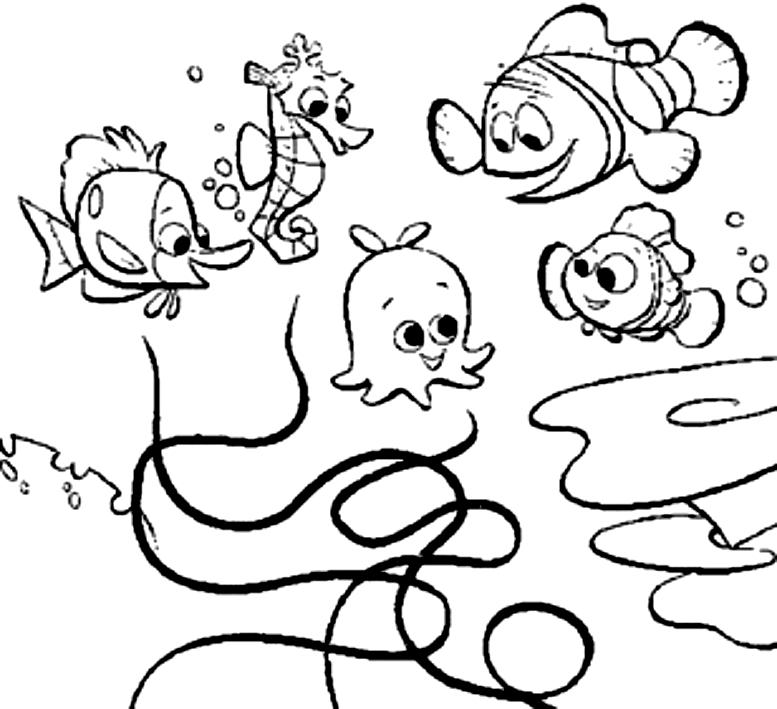 Disegno Di Pulce Perla Varenne Marlin E Nemo Alla Ricerca Di