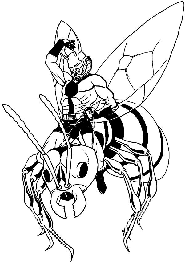 Disegno Di Ant Man Che Cavalca La Vespa Da Colorare