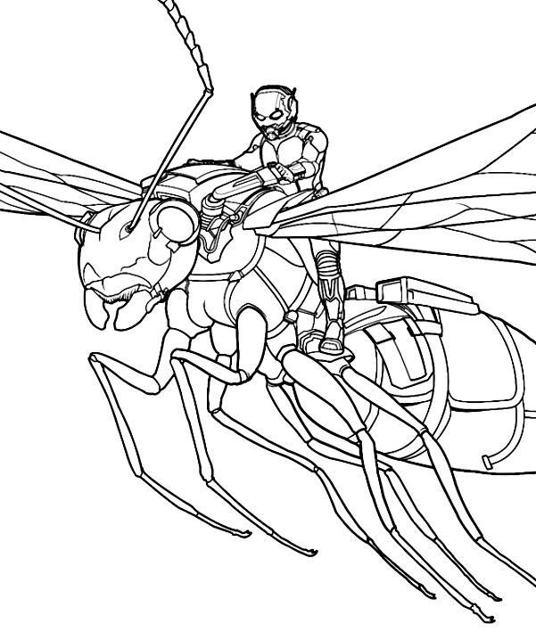Dessin d'Ant-Man survolant la guêpe pour imprimer et colorier