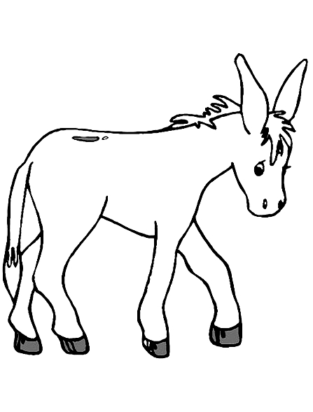 Drawing 9 from Donkeys coloring page to print and coloring