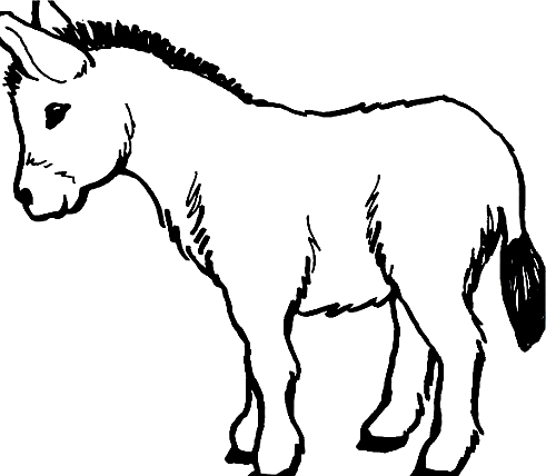 Drawing 12 from Donkeys coloring page to print and coloring