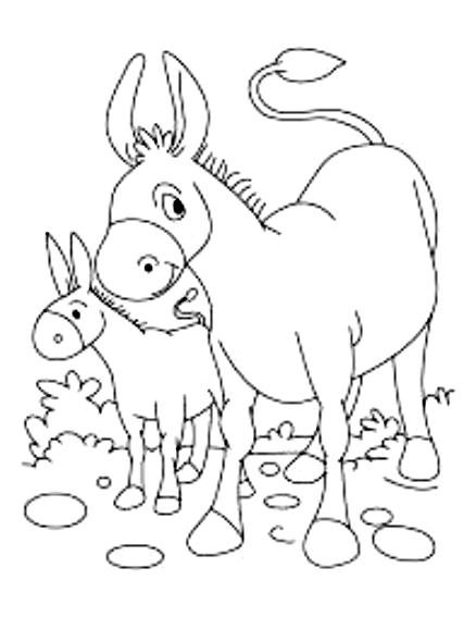 Drawing 14 from Donkeys coloring page to print and coloring