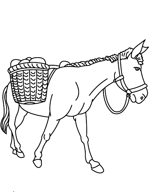 Drawing 20 from Donkeys coloring page to print and coloring