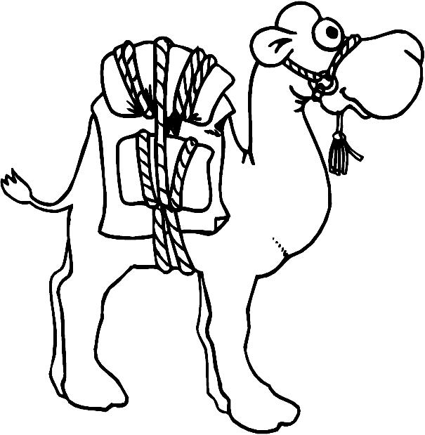Disegno 1 di cammelli da stampare e colorare