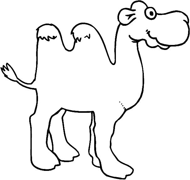 Disegno 2 di cammelli da stampare e colorare