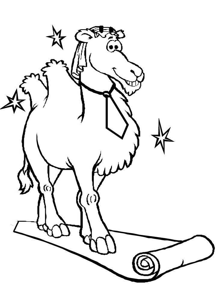 Disegno 16 di cammelli da stampare e colorare