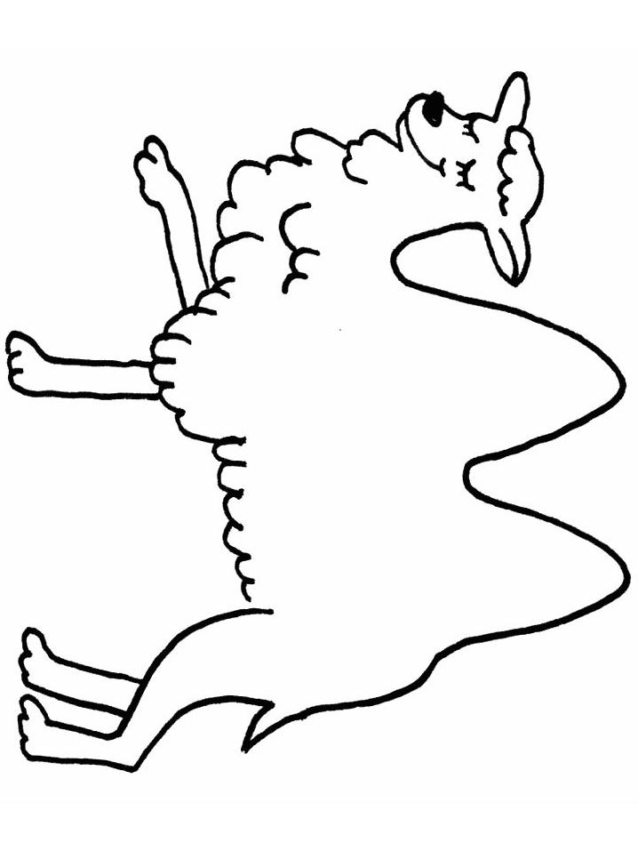Disegno 20 di cammelli da stampare e colorare