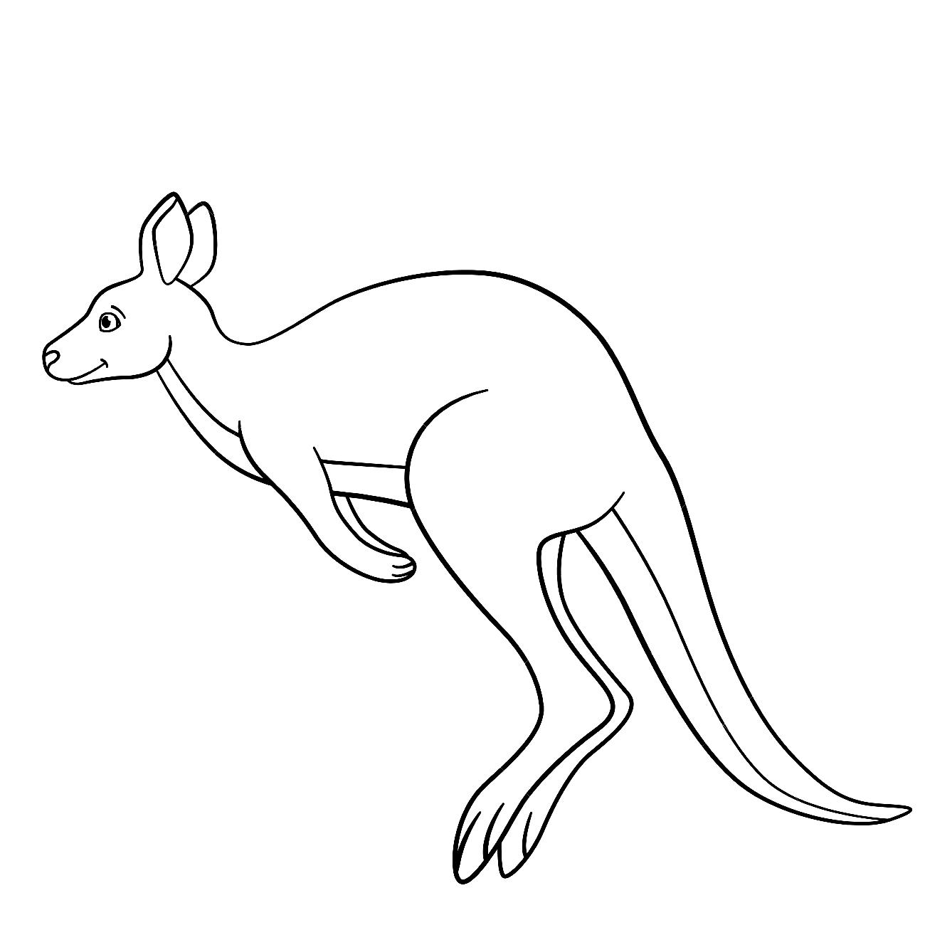 Disegno 16 di canguri da stampare e colorare