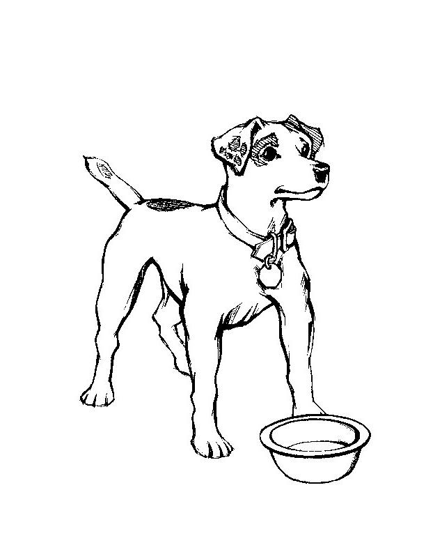 Disegno 1 di cani da stampare e colorare