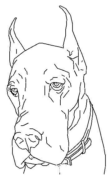 Disegno 3 di cani da stampare e colorare