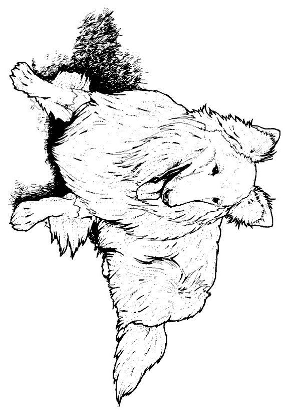 Disegno 13 di cani da stampare e colorare
