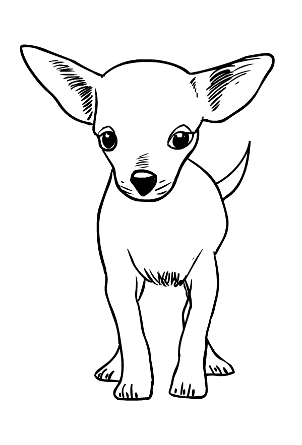 Disegno Di Cani Da Colorare