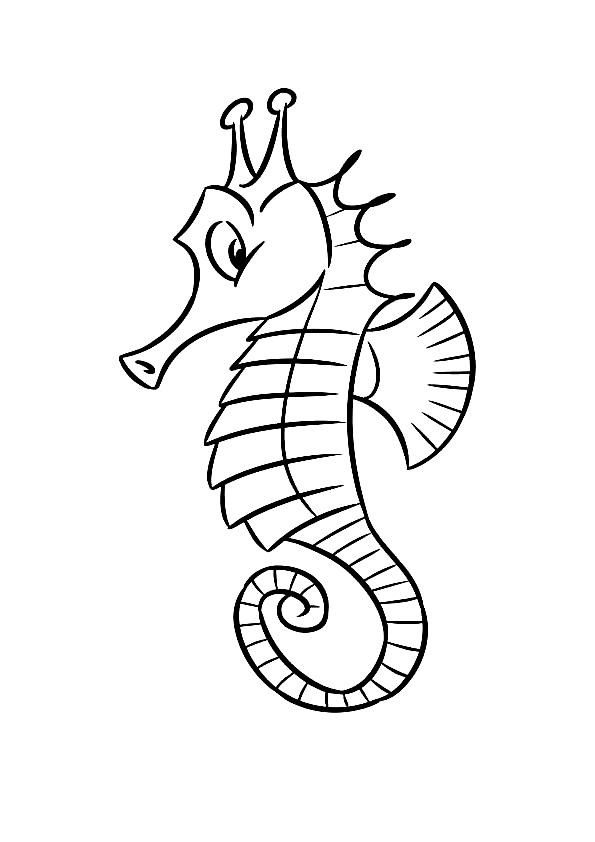 Disegno 3 di Cavallucci Marini da stampare e colorare