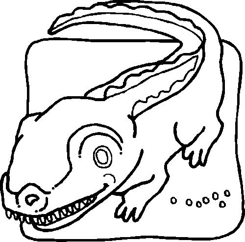 Disegno 4 di coccodrilli da stampare e colorare