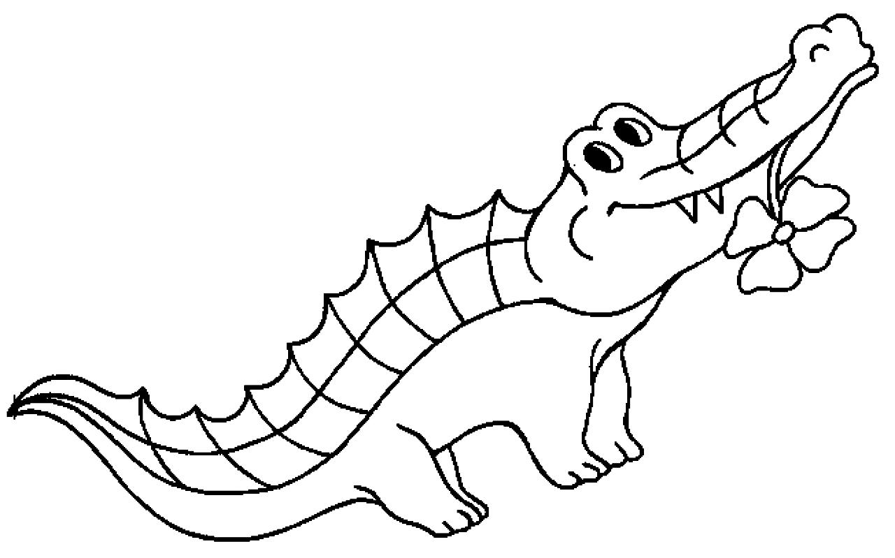 Disegno 13 di coccodrilli da stampare e colorare