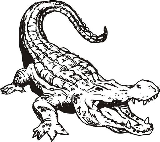 Disegno 19 di coccodrilli da stampare e colorare