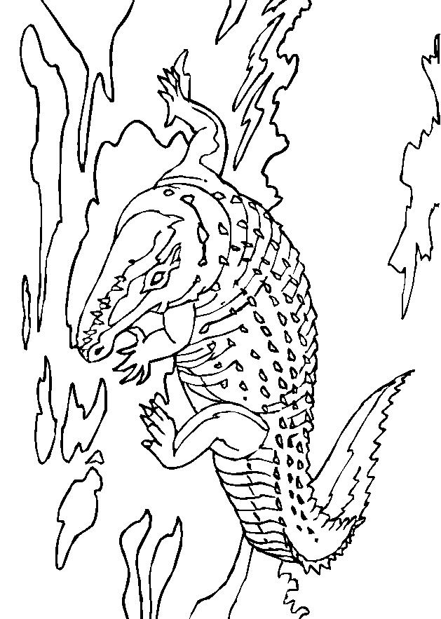 Disegno 24 di coccodrilli da stampare e colorare