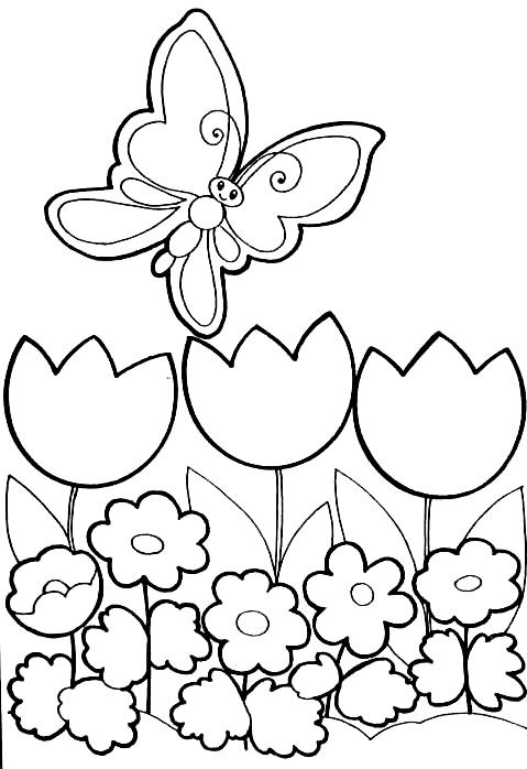 Disegno 3 di farfalle da stampare e colorare
