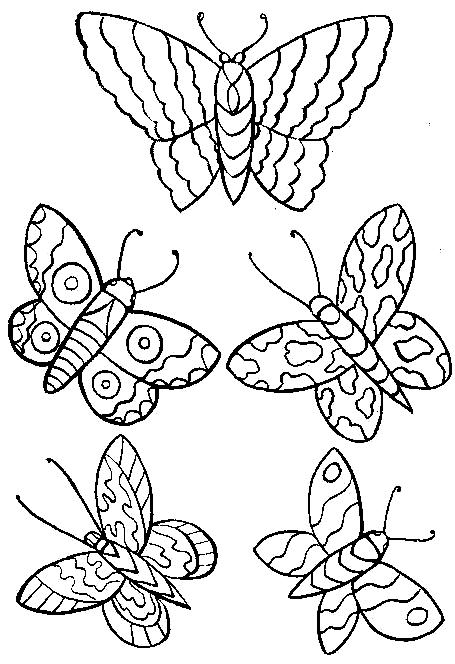Disegno 4 di farfalle da stampare e colorare