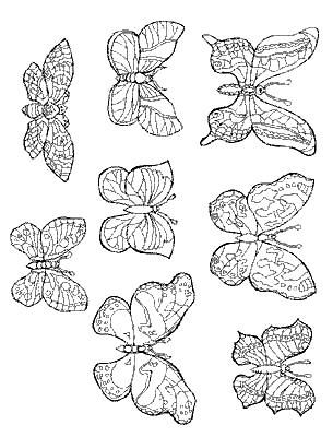 Disegno 8 di farfalle da stampare e colorare