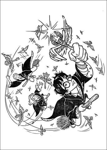 Disegno Di Harry Potter E I Suoi Amici Sulle Scope Magiche Da Colorare