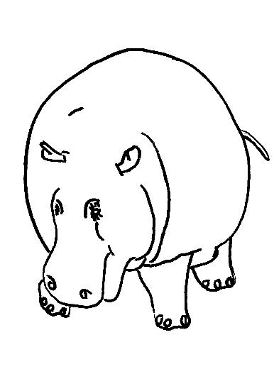 Disegno 6 di ippopotami da stampare e colorare