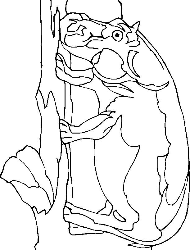 Disegno 9 di ippopotami da stampare e colorare