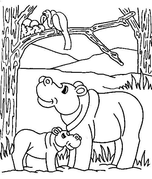 Disegno 11 di ippopotami da stampare e colorare