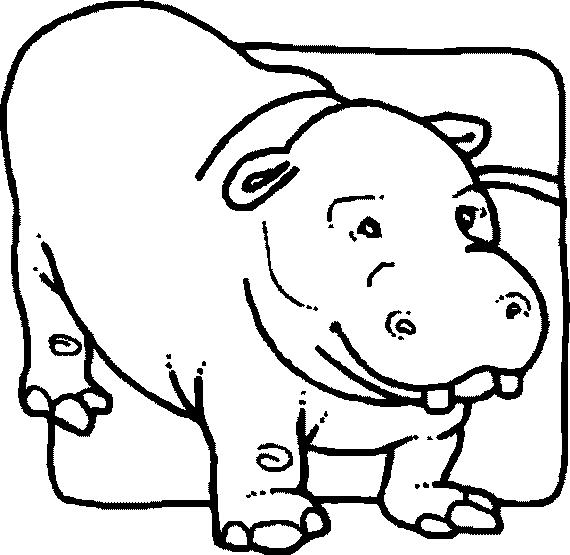 Disegno 18 di ippopotami da stampare e colorare