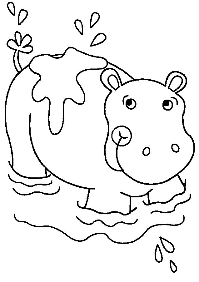 Disegno 19 di ippopotami da stampare e colorare