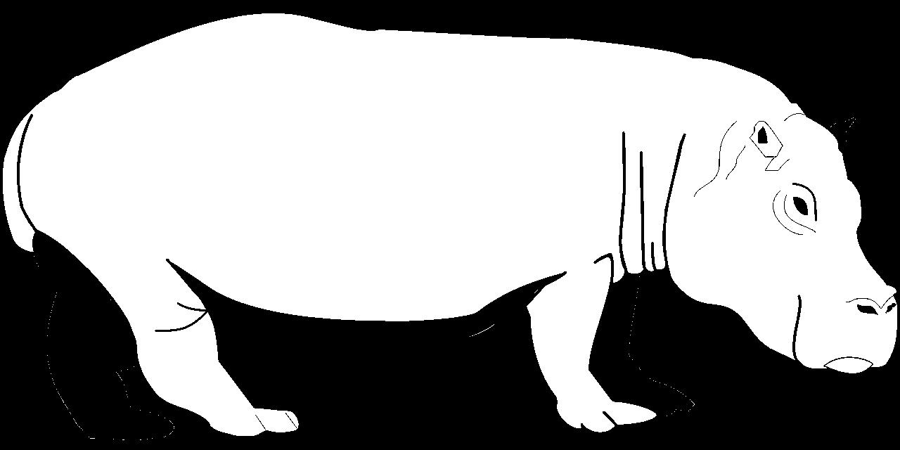 Disegno da colorare di ippopotamo profilo