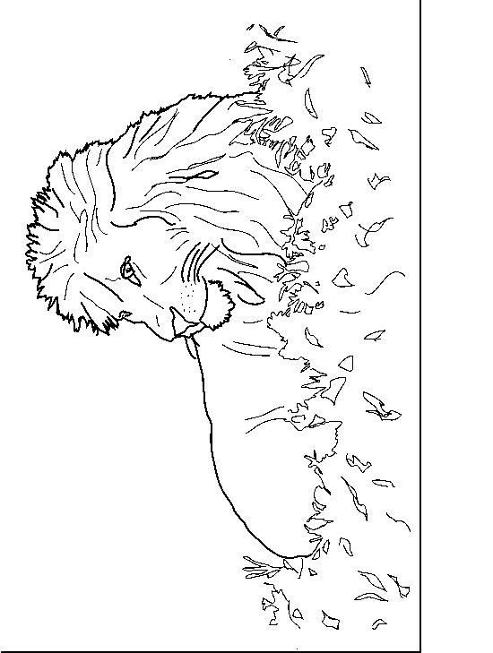 Disegno 3 di leoni da stampare e colorare