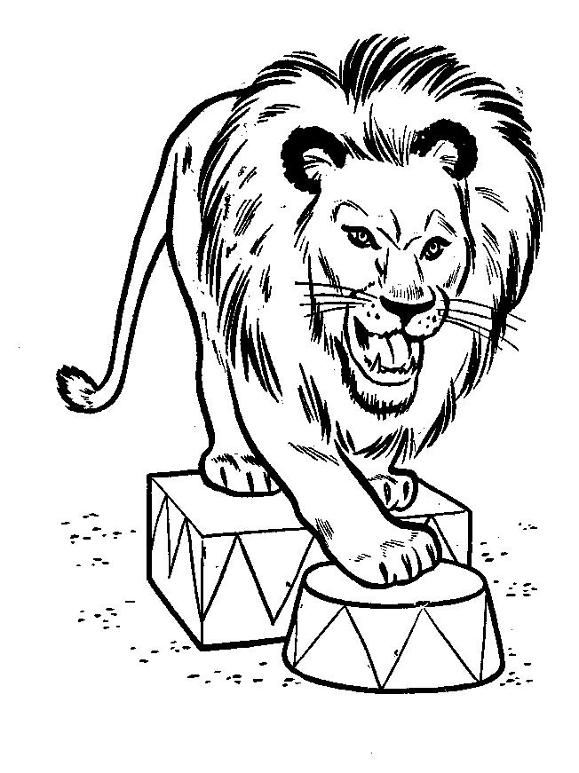 Disegno 5 di leoni da stampare e colorare