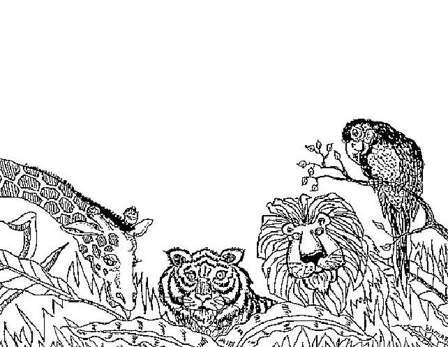Disegno 7 di leoni da stampare e colorare