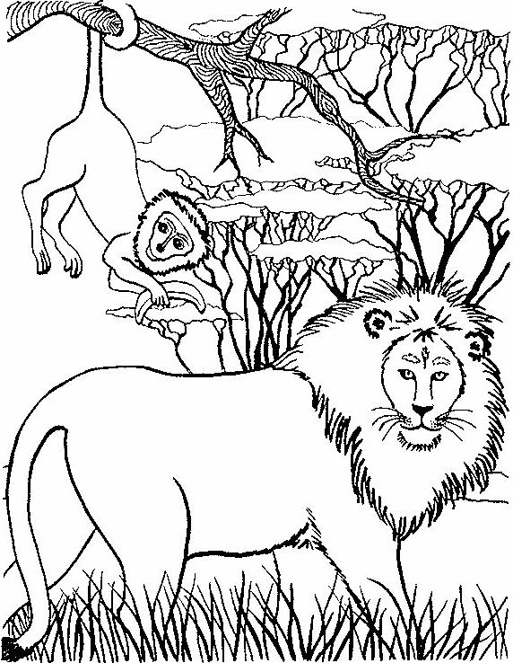 Disegno 9 di leoni da stampare e colorare