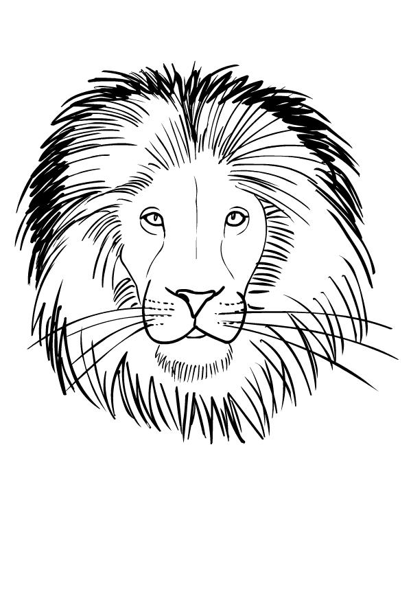Disegno di leoni da stampare e colorare