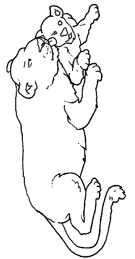 Disegno 23 di leoni da stampare e colorare