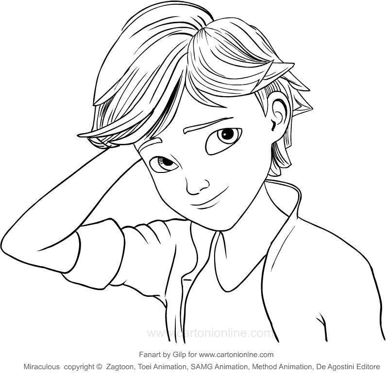 Coloriage de Adrien Agreste (Miraculous) à imprimer et colorier