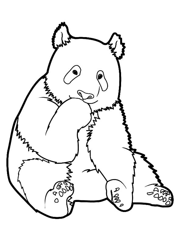 Disegno 1 di panda da stampare e colorare