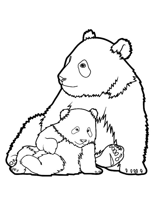 Disegno 3 di panda da stampare e colorare